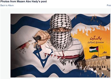 mazen-abo-hady-offending-image-i-flag